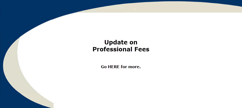 Update on professional fees