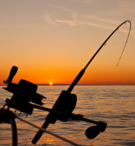 Catching Things Early - by Dr. Ross Grumet